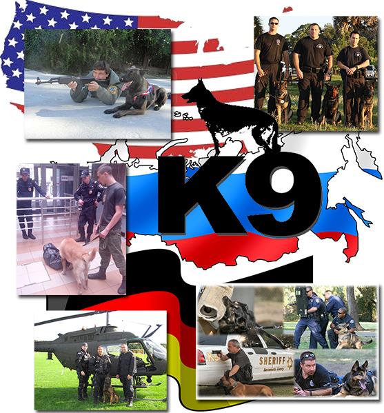 опытная охрана с собаками