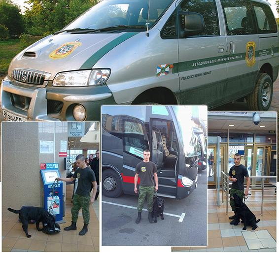 охрана с собаками - сфера применения