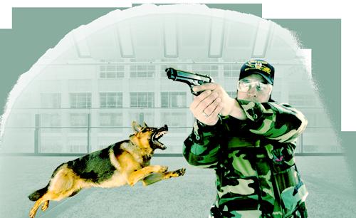 Собака-телохранитель для защиты